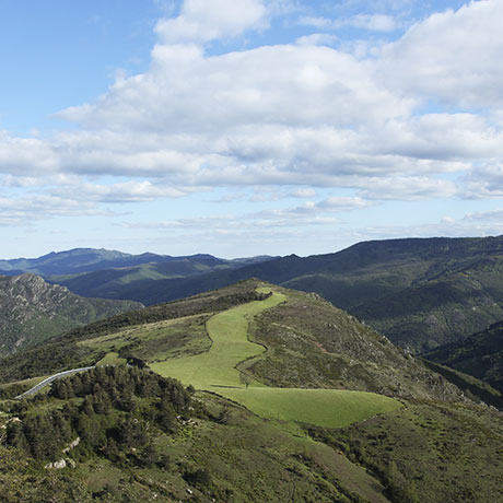 National Park of the Cevennes